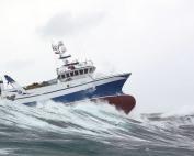 SFFSL vessel support